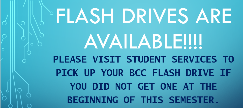 Flash Drives available in Student Services